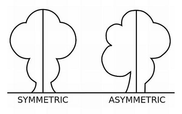 simetris versus asimetris