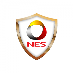NES LOGO Website